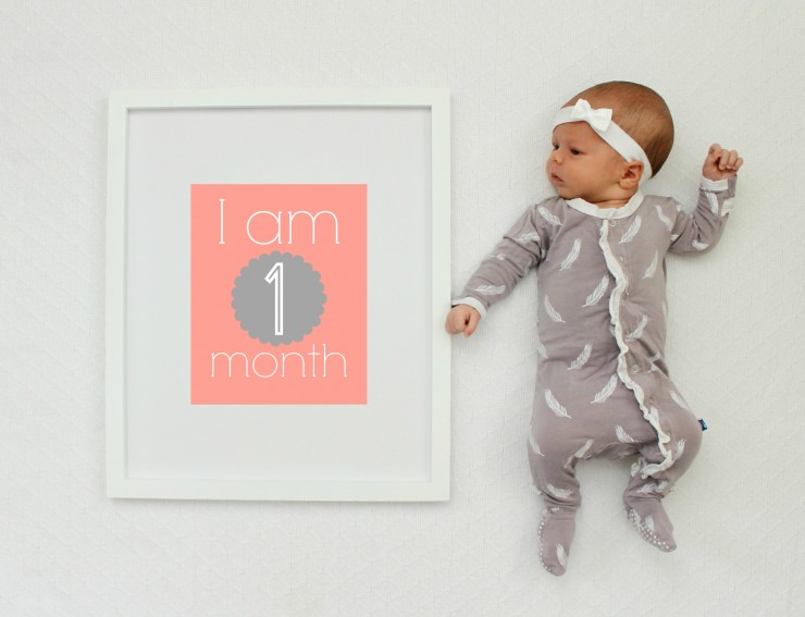 Baby Monthly Picture Props: the Child at Heart Blog
