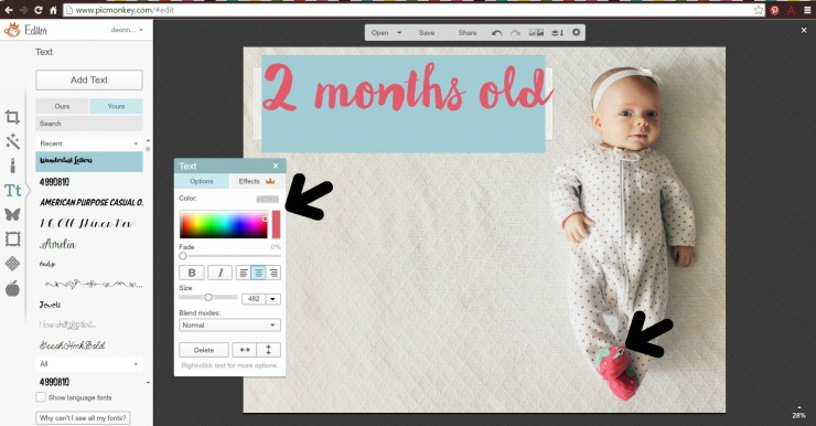 Monthly Baby Stats Picture Tutorial: C
