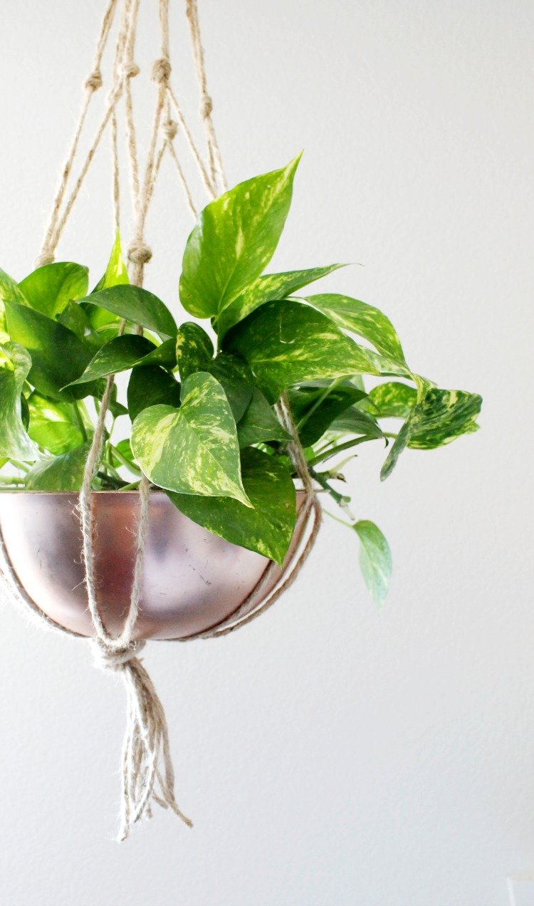Copper Bowl Hanging Planter DIY Project: the Child at Heart blog